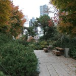Park am Gericht in Downtown Vancouver
