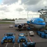 KLM-Vogel