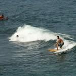 Road to Hana - Surfer