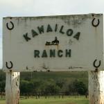 Die Kawailoa Ranch, hier fand das Spektakel statt